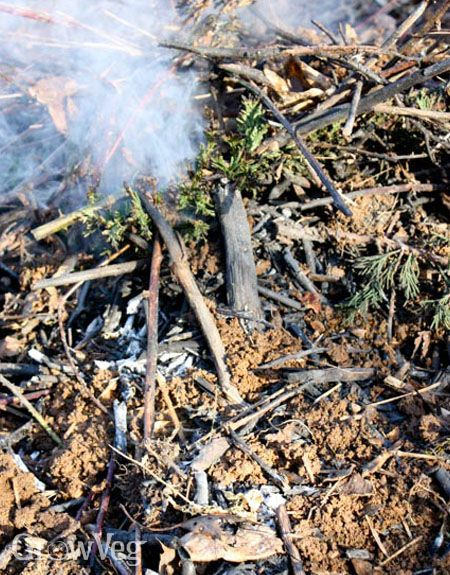 How To Clear Overgrown Land Without Using Chemicals Burning Woody Debris Make Biochar Or