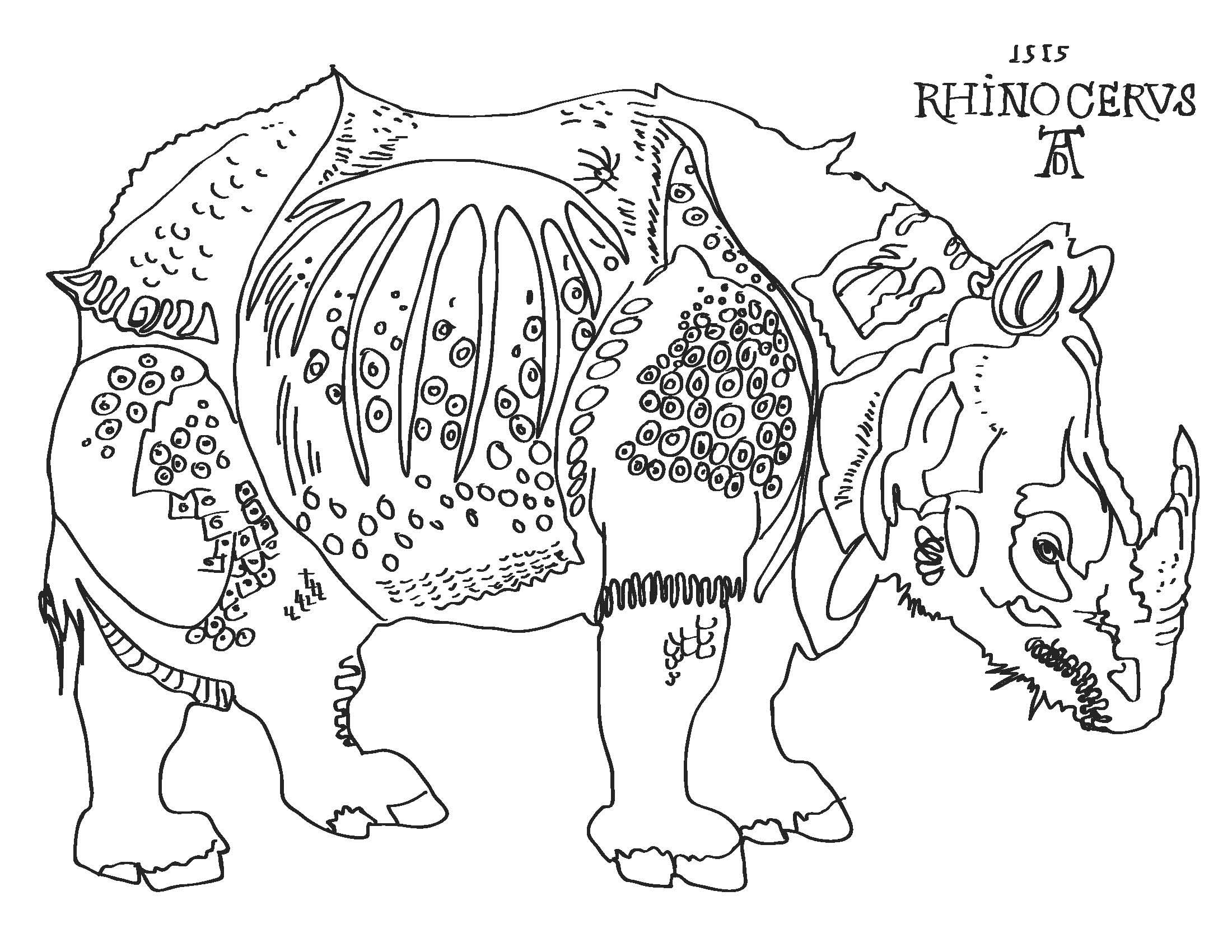 Durer Rhino Coloring Page CC Cycle 1 Week 15   Art, Rhino ...