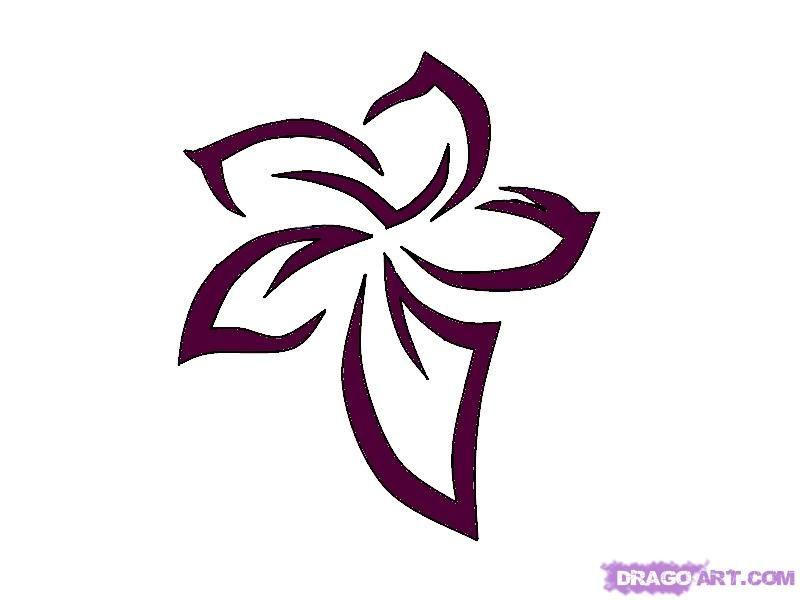 hawaiian flowers drawn - Google Search | Beauty ...