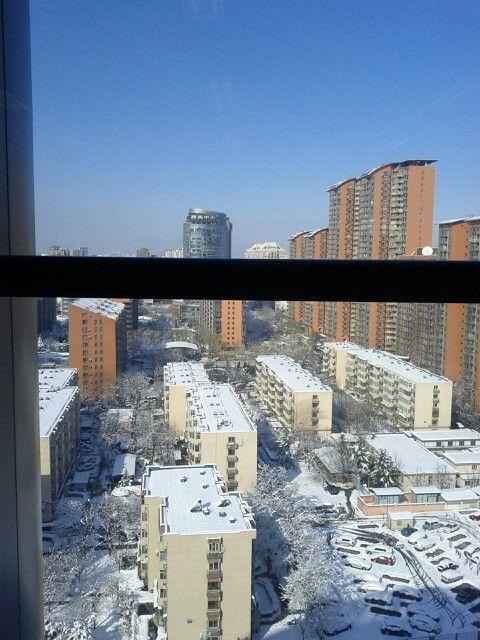 20130320春雪