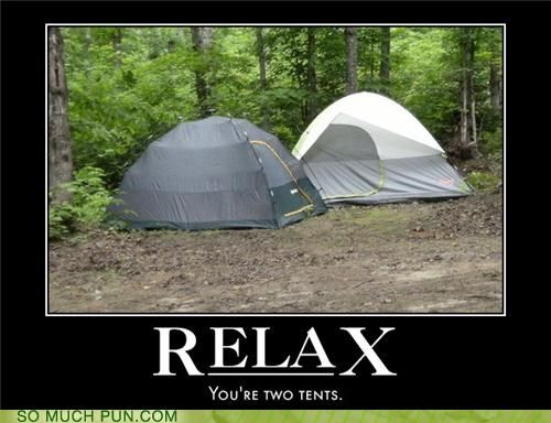 Funny Pun Photos - Itu0027s The Constant Threat Of Bear Attack : funny tents - memphite.com