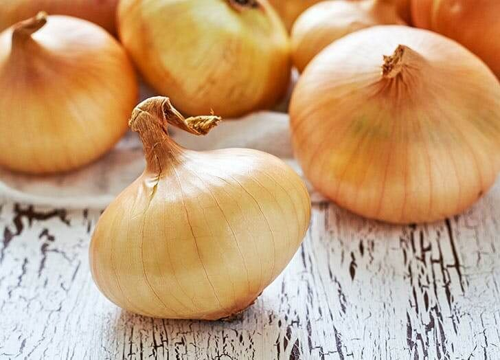 Growing Onions In Aquaponics Growing Onions What Foods Cause
