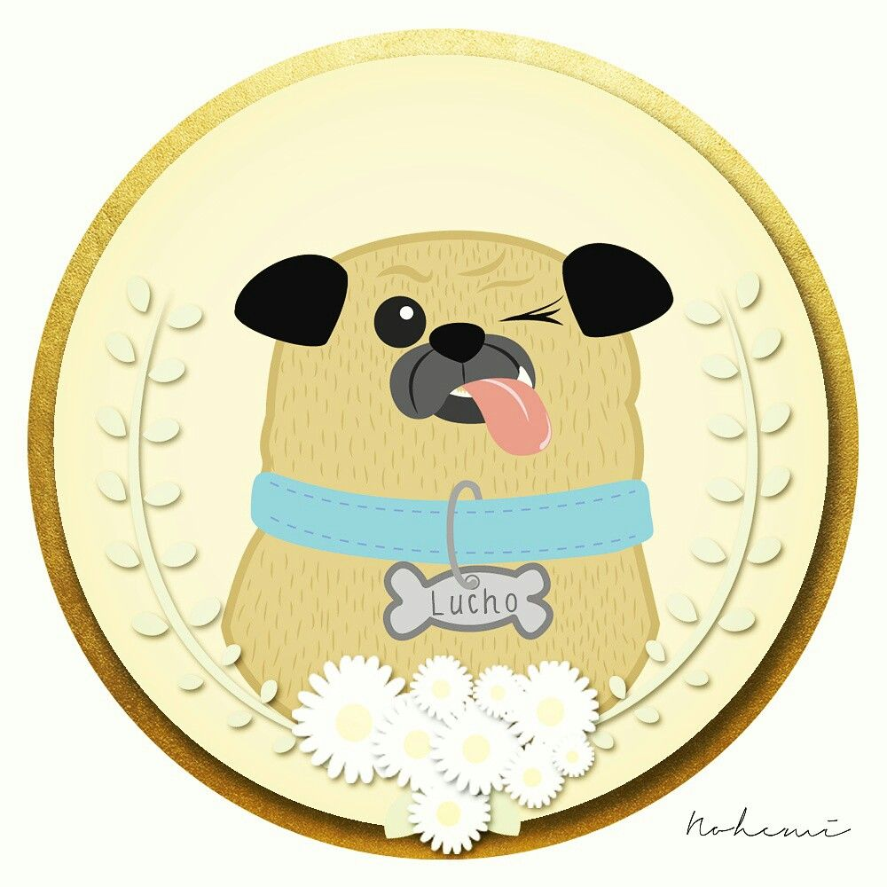 Lucho Panucho #ilustración #doodle #pug #puglove #dog #desing