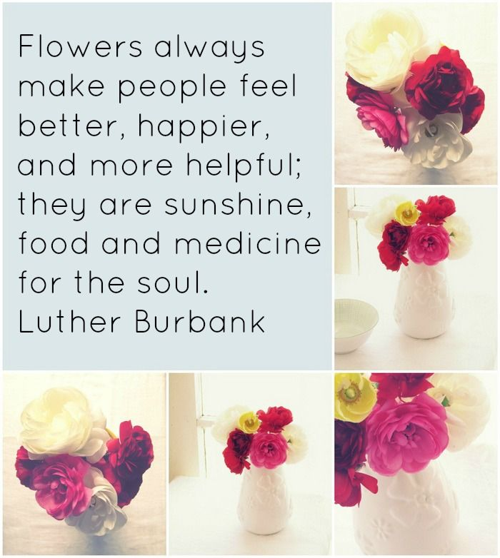 Flowers always make people feel better, happier, and more