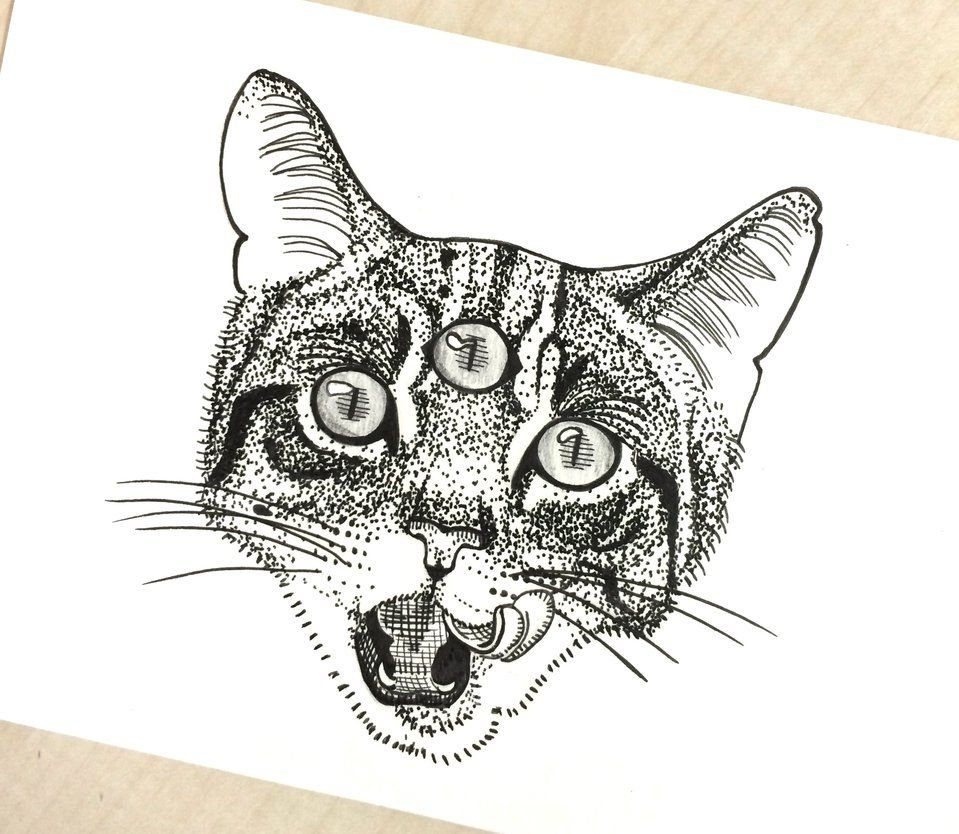 Three Eyed Cat Tattoo Meaning Google Search Cat Tattoo Shoulder Tattoo Shoulder Tats