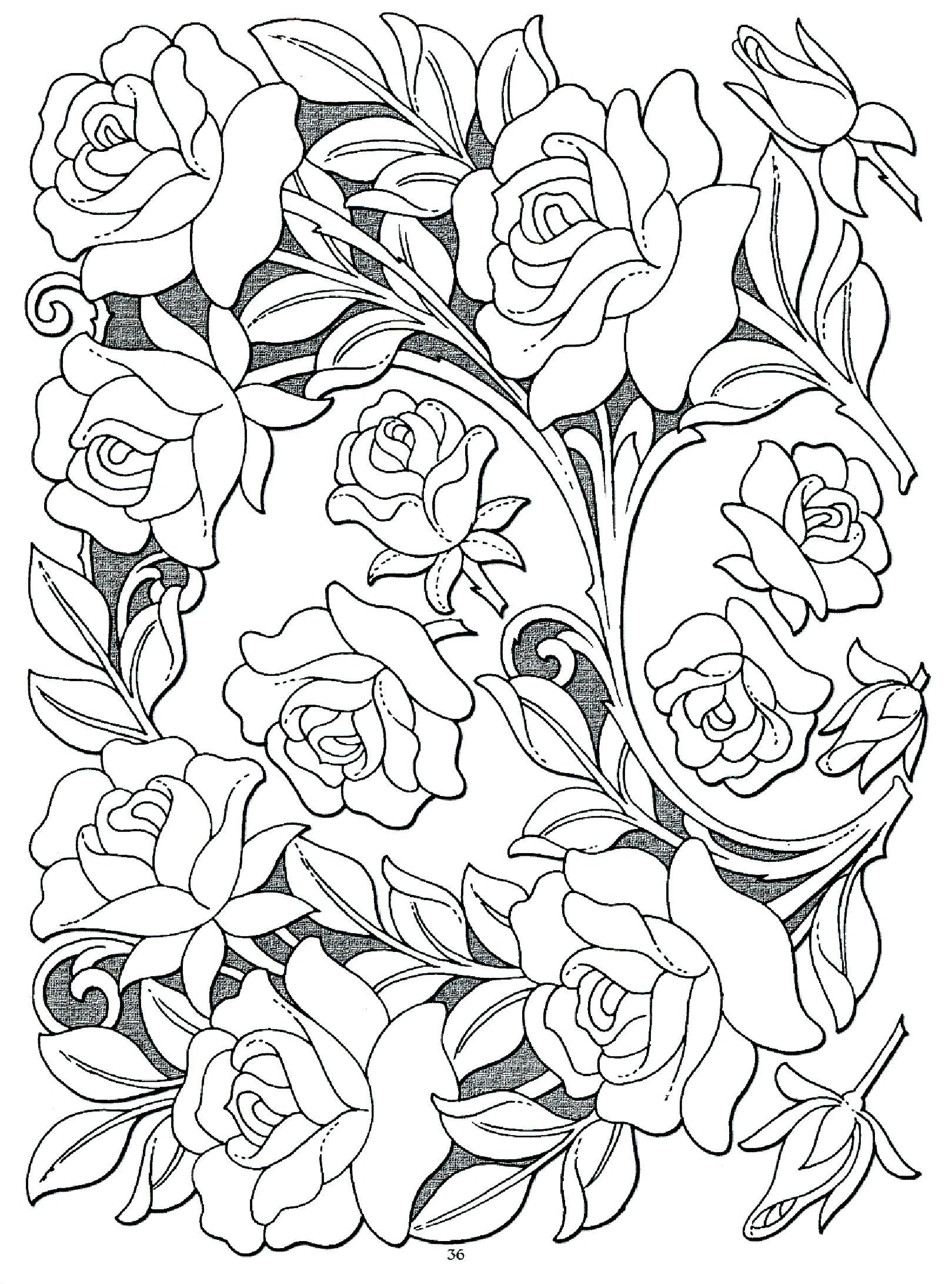 Картинки по запросу sheridan patterns | Flores para colorear ...