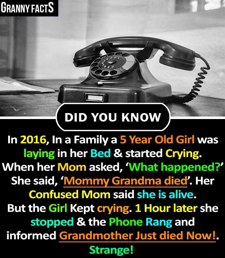 It S Strange Interesting Facts About World Wierd Facts