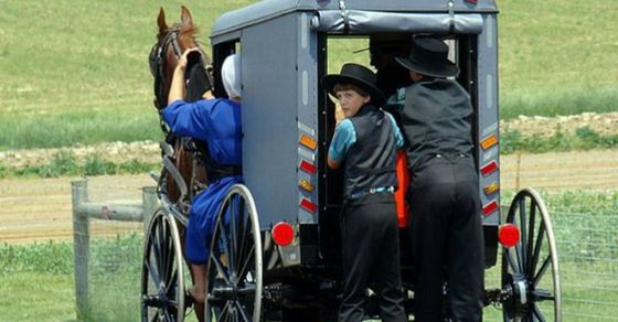 Why The Amish Rarely Get Sick and How You Can Learn From Them