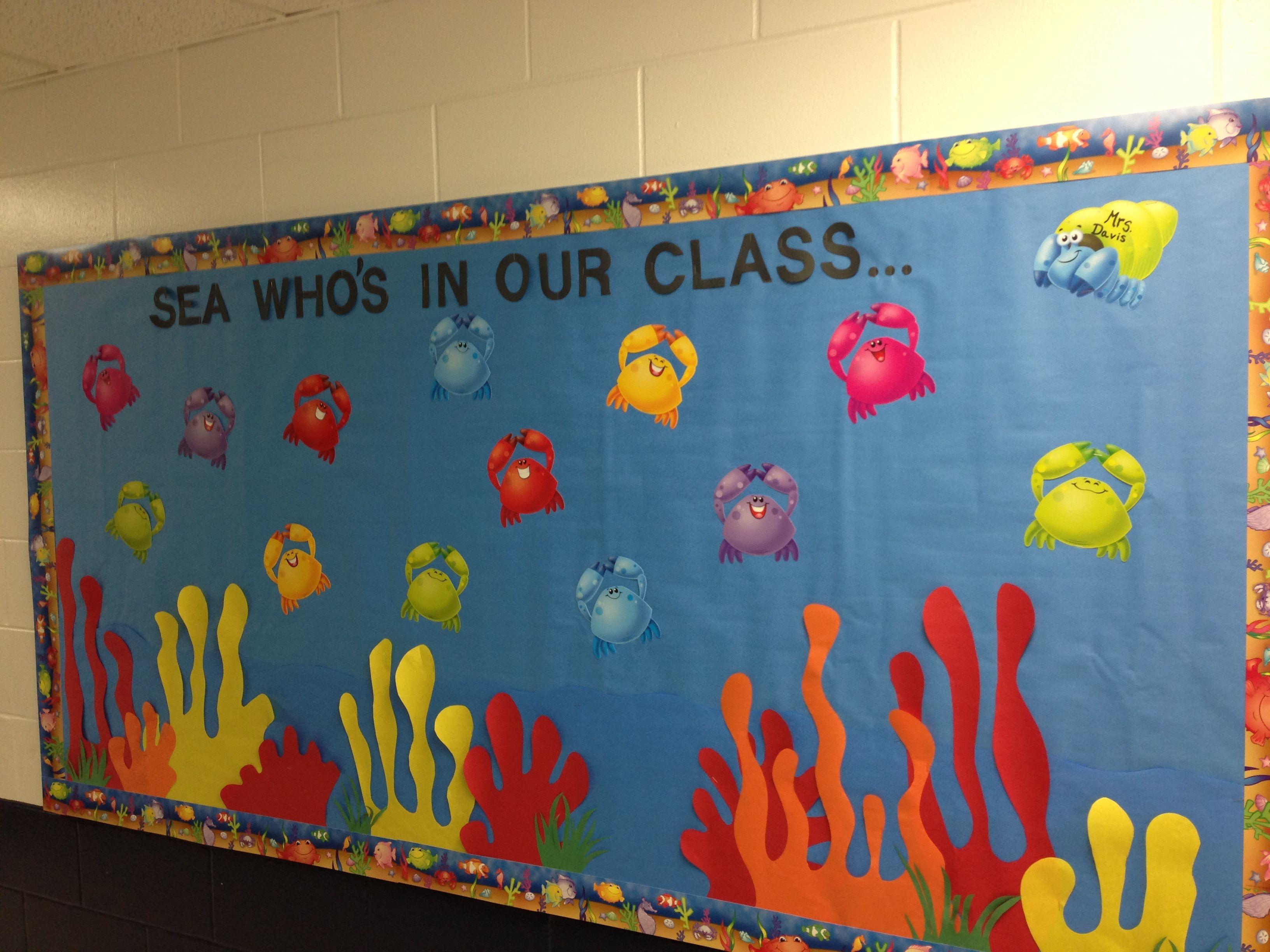 My Beach Theme Classroom Bulletin Board