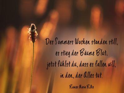 Rilke gedichte neuanfang Anfang