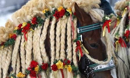 Cavalos são enfeitados para tradicional procissão de Páscoa na Alemanha |  Cavalos, Pascoa, Coelhinho da páscoa