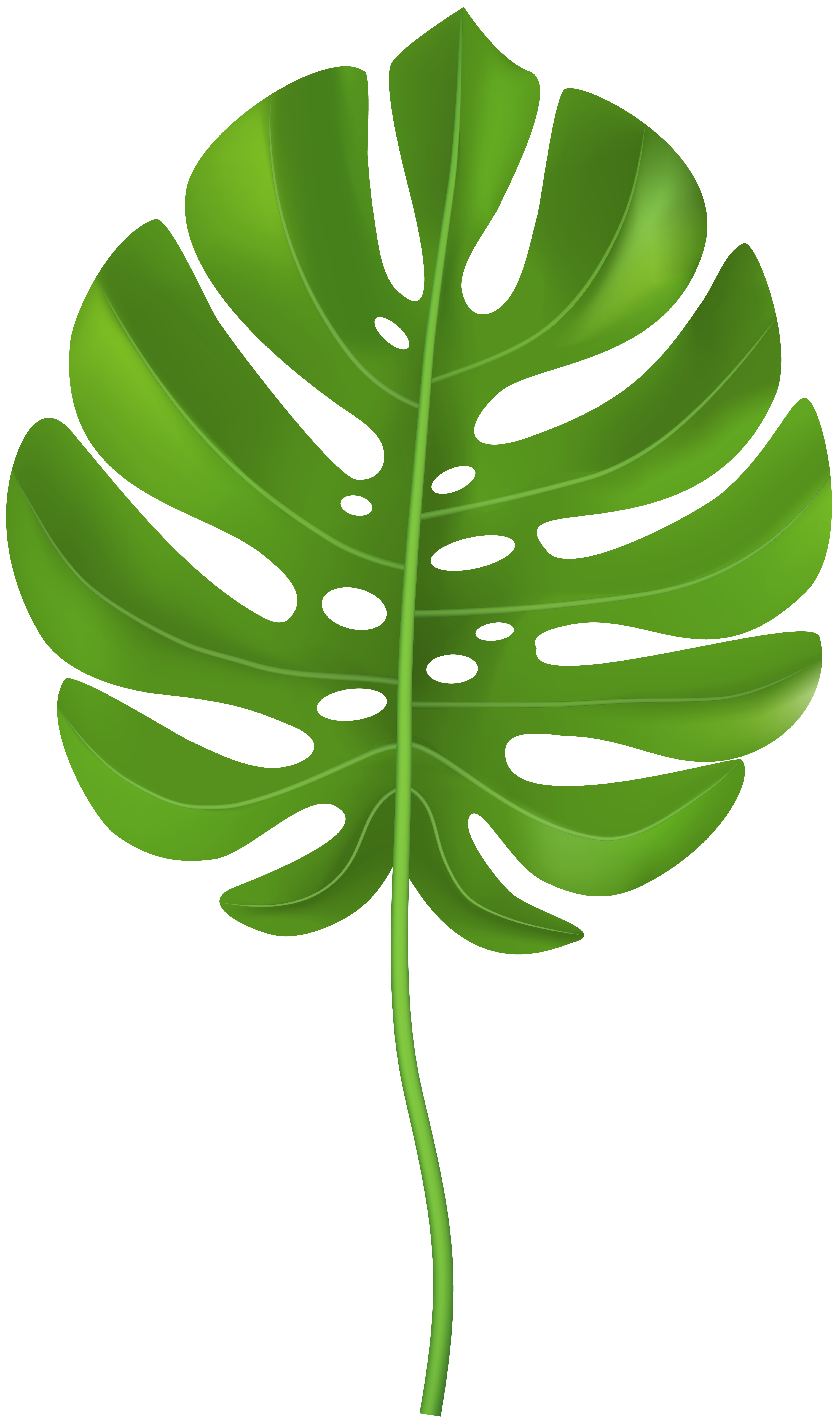 Moana leaf. Tropical leaves clipart dino