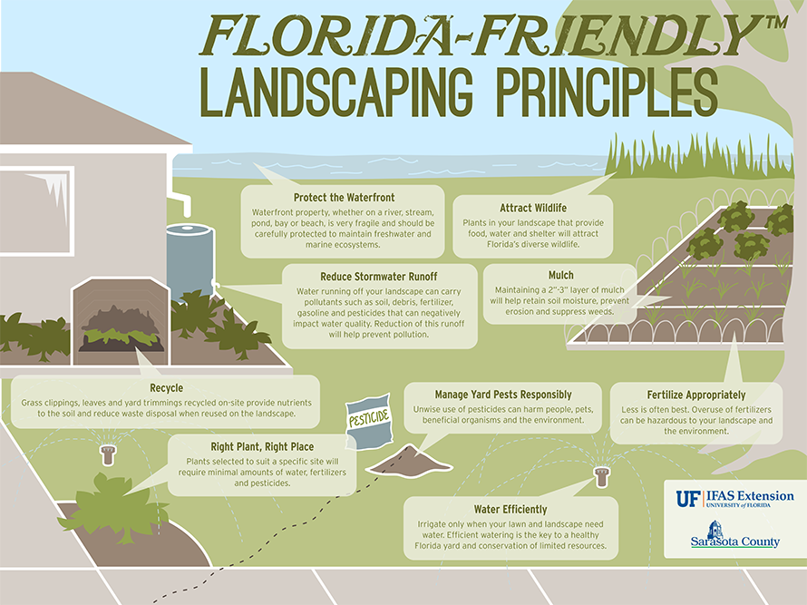 With This Infographic Remembering The Florida Friendly