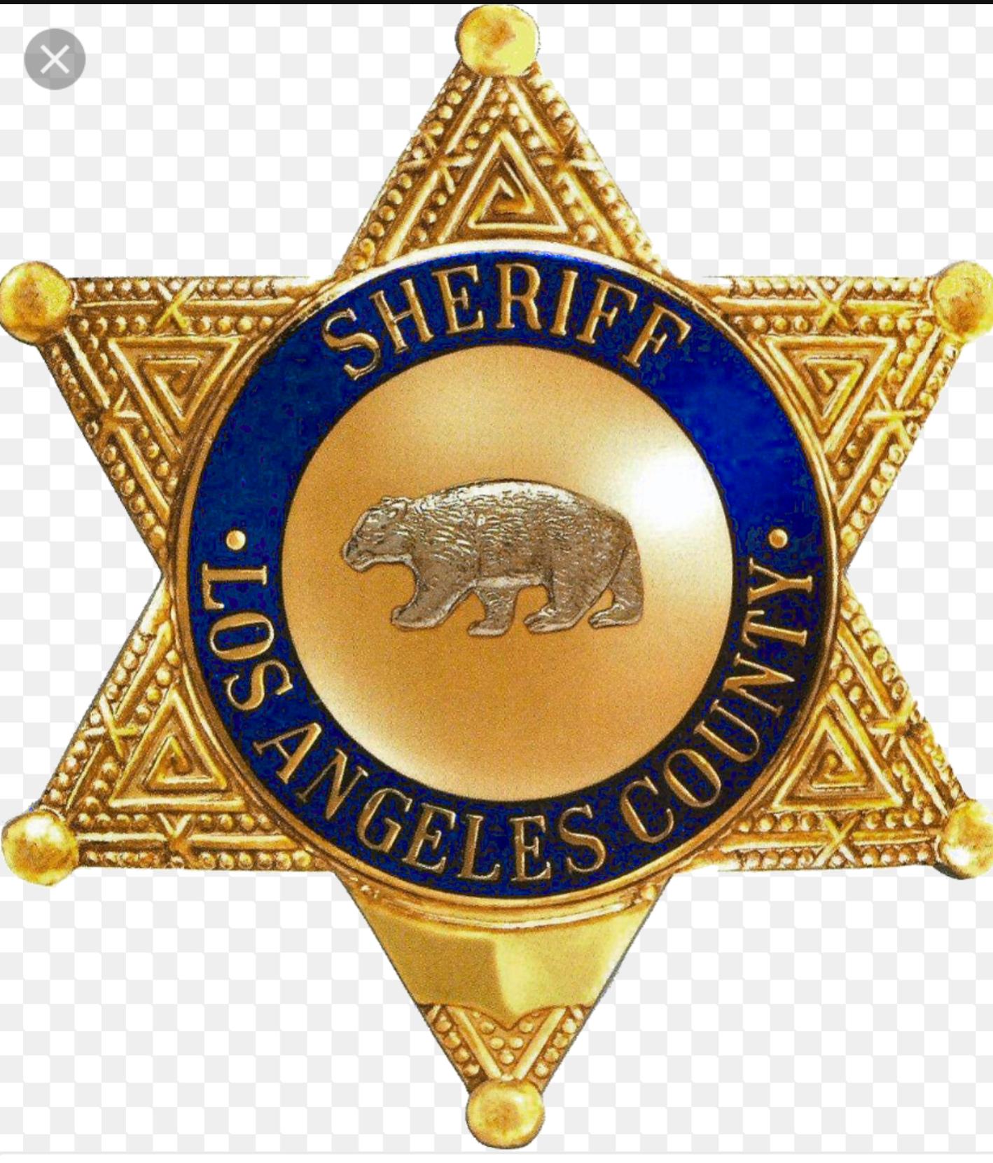 12++ Deputy sheriff badge clipart information