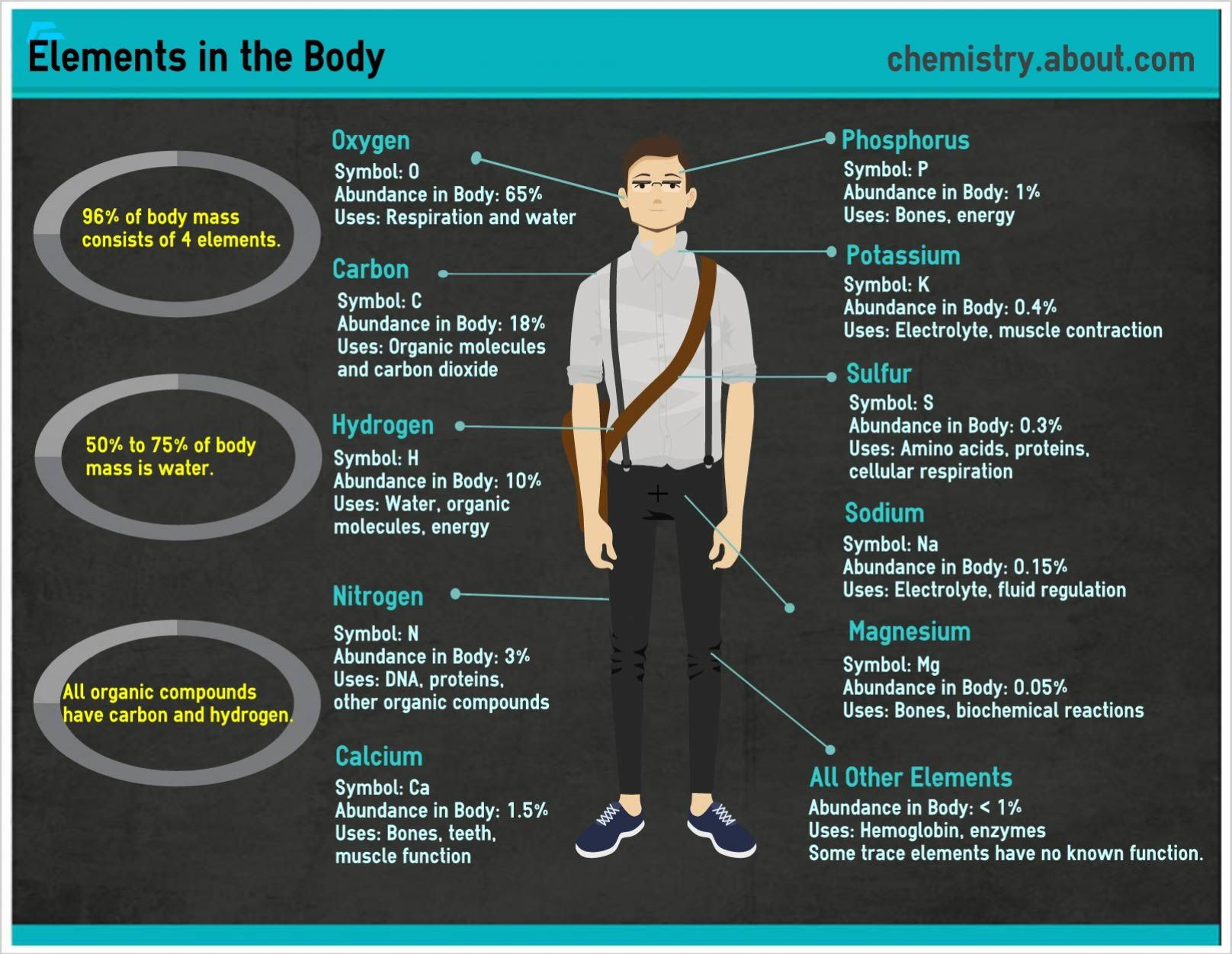 Which Elements Are In The Human Body