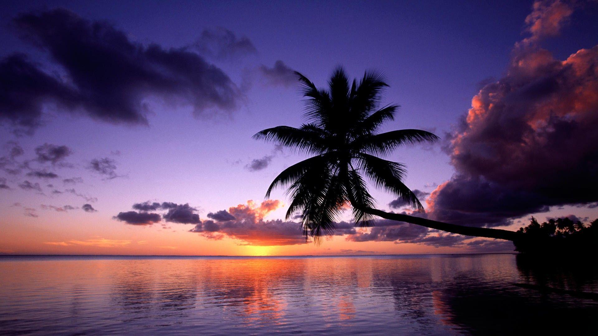 Tramonto A Moorea Isole Della Società Polinesia Francese