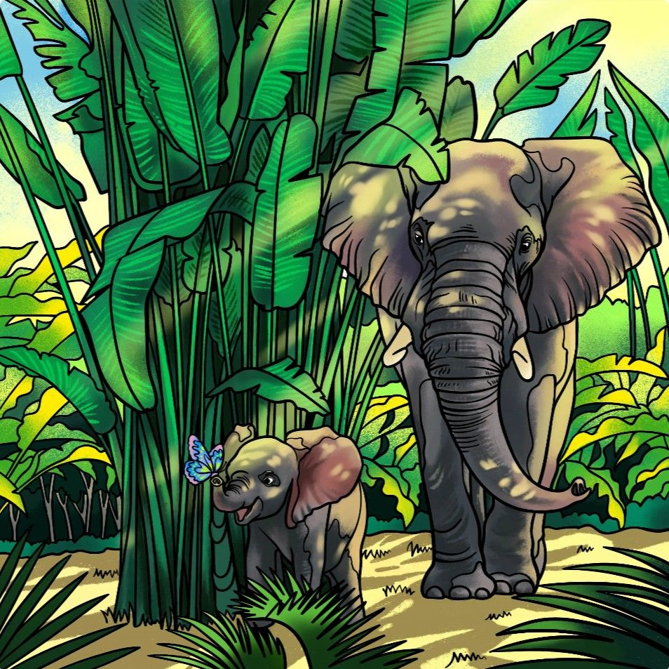 Jungle Elephants Coe Calf Butterfly Painting Conchettat Colorful Pictures Cartoon Drawings Picture Illustration
