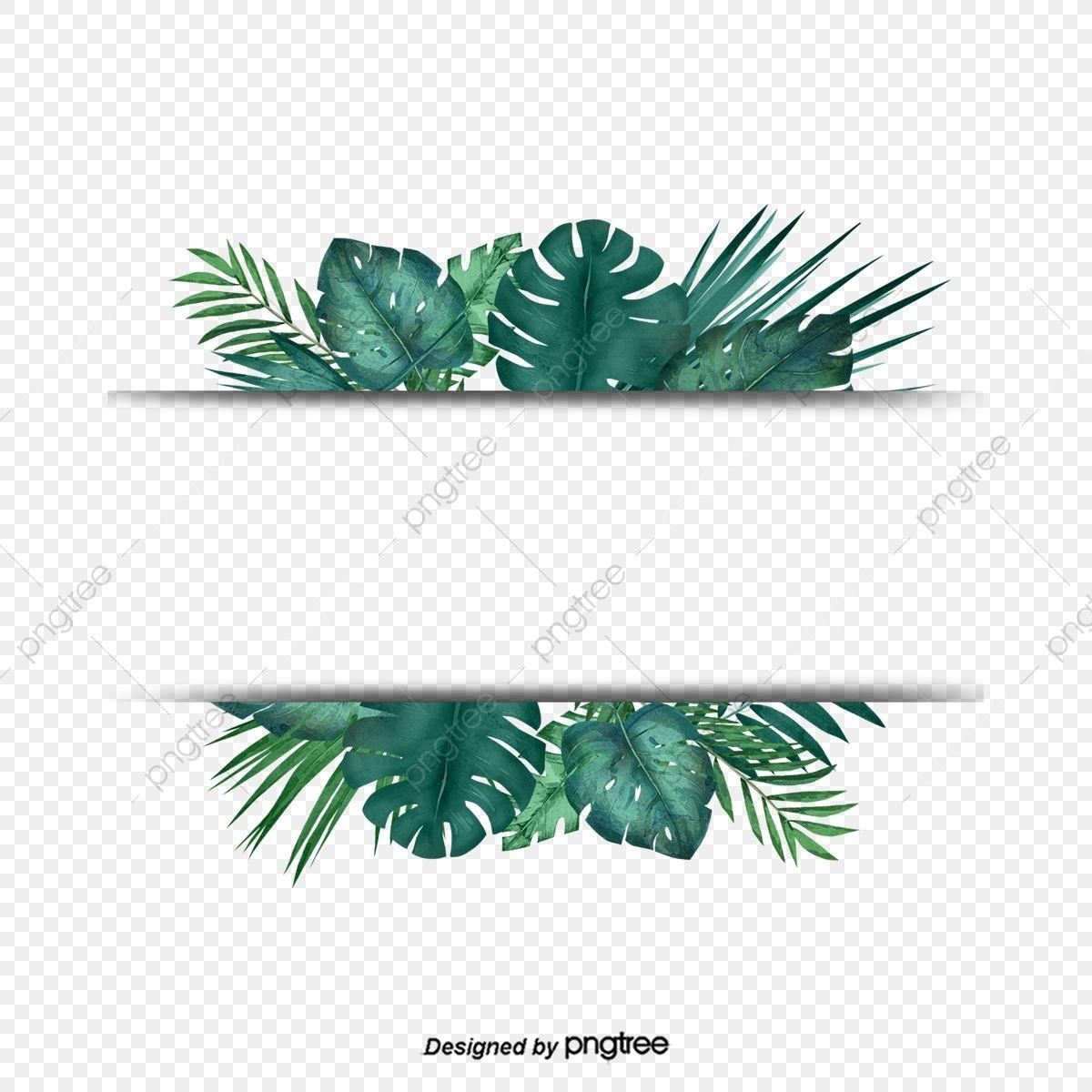 Green Tropical Plant Palm Leaf Border Border Clipart Palm Leaf Botany Png Transparent Clipart Image And Psd File For Free Download Palm Background Leaf Border Leaves Vector