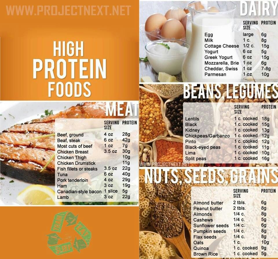 High protein foods are critical to a proper diet for a person with high protein foods are critical to a proper diet for a person with adhd forumfinder Choice Image