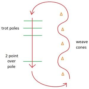 Trotting Pattern - Lessons In TR