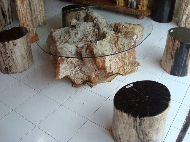 Creative DIY Coffee Tables | More Creative Tree Stump Decorating Ideas »  Tree Stump Coffee Table