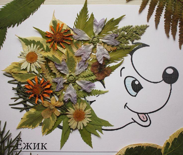 Вот такой у нас гербарий милый creche Pinterest Otoño, Flores - flores secas