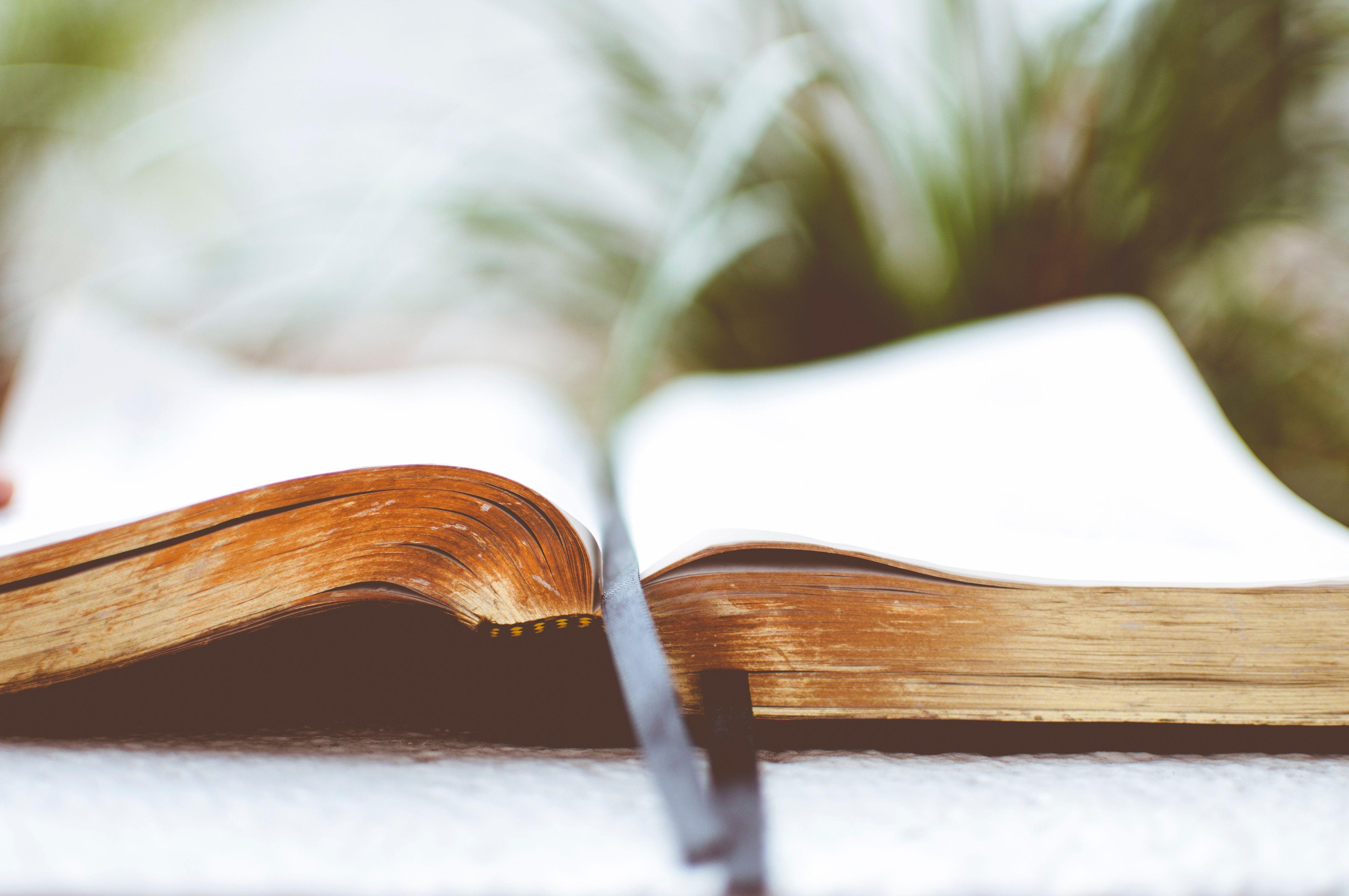 Depuis quelques temps je collectionne les livres sur le bonheur et le développement personnel. Même si je pense qu'il ne suffit pas de lire pour être heureux, j'ai trouvé dans nombreux d'entre eux de beaux messages et belles reflexions à intégrer dans mon quotidien. Sur la plage ou au coin du feu, si vous ne savez pas quoi lire ou pour vous débuter une introspection et avancer dans notre cheminement, je vous donne ici mes favoris. Vous pouvez également consulter ma bibliothèque !  1. Les…