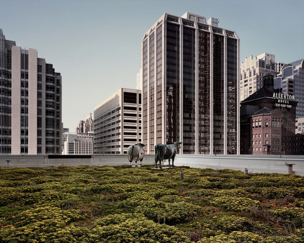 Gorgeous Photos Of The Rooftop Gardens Hiding High Above Our Heads Rooftop Garden Gardens Of The World Rooftop City