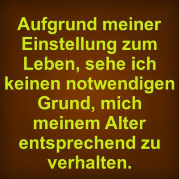 Lustige Sprüche | desired.de
