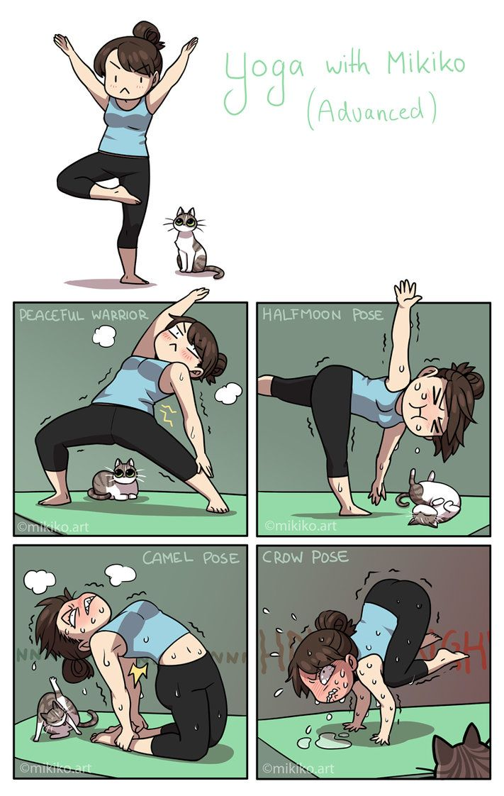 99gapnet Funny Memes About Yoga Vs Vodka Lol Humor Laugh