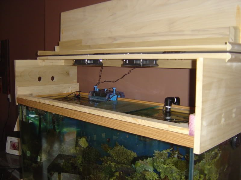 Diy Canopy Do Most Of You Build The Canopy To Rest On Top Of Tank Or Drop Down Over Reef Central Online Commun Aquarium Hood Fish Tank Stand Aquarium Stand