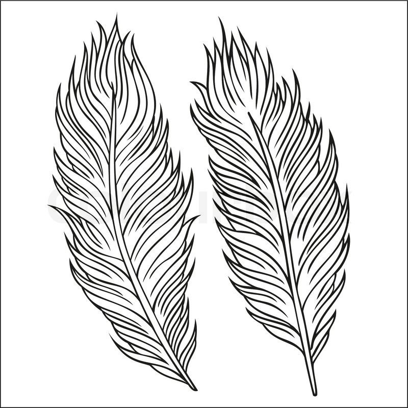 Line Art Feather : Stock vector of vintage abstract decorative ethnic