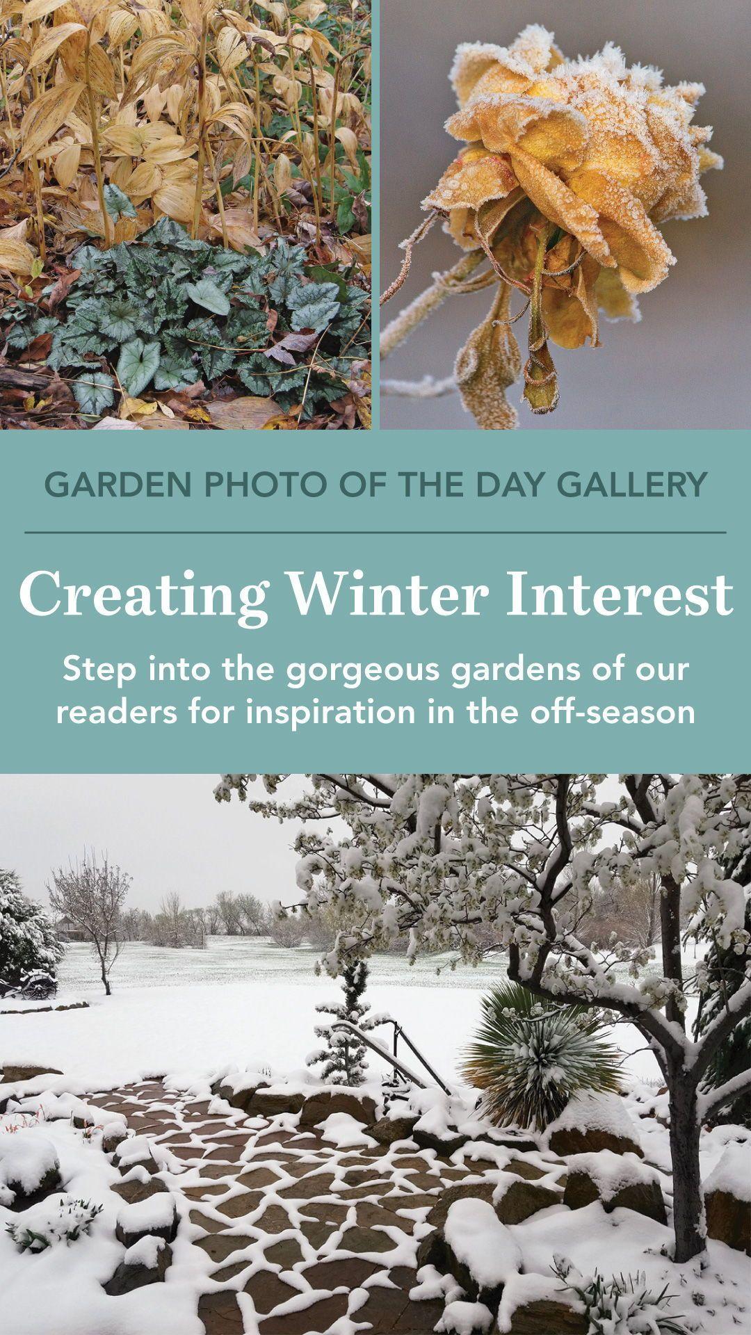 ab610b0cbca7972f6ae36db32e4cbbf9 - How Do Gardeners Make Money In Winter