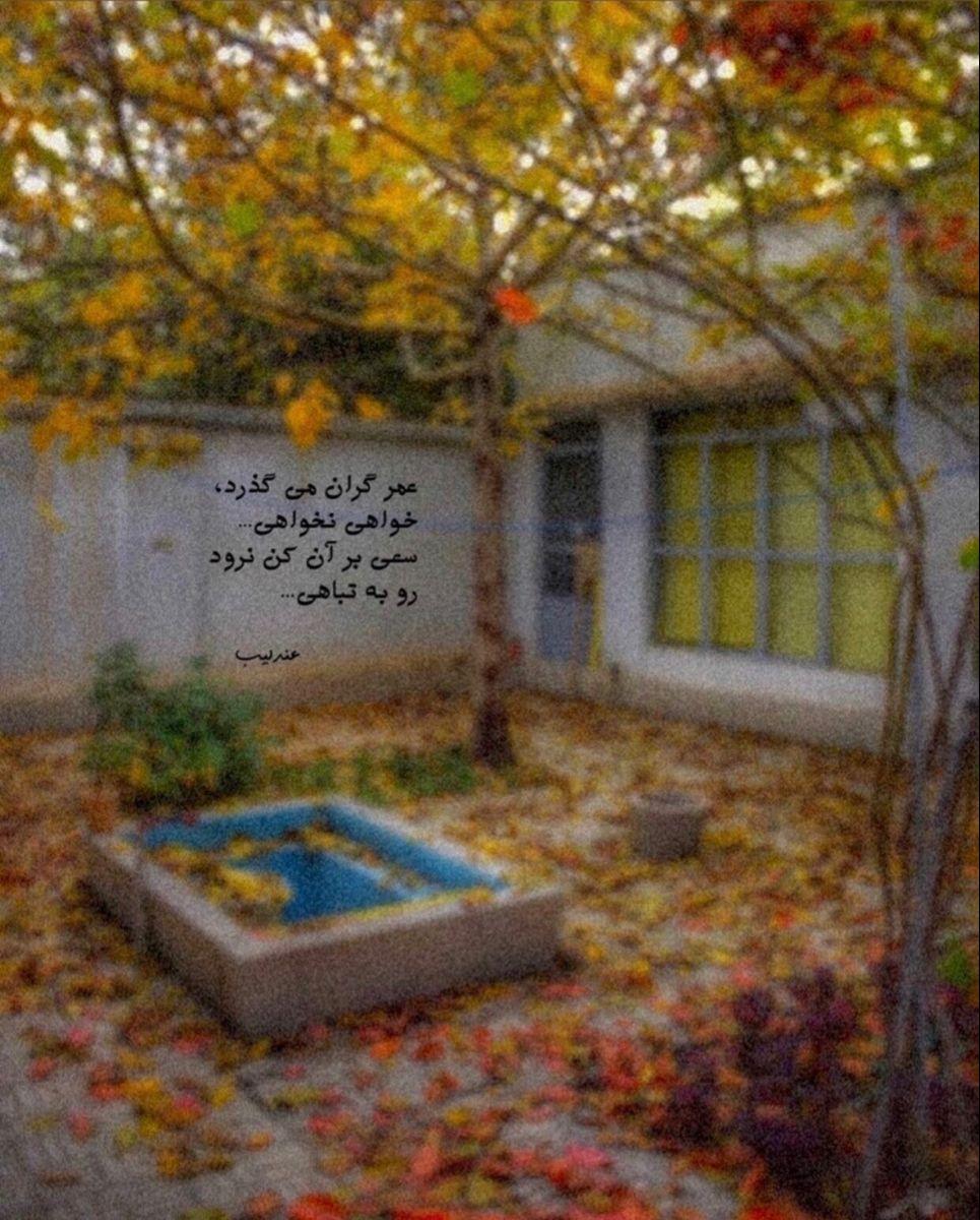 به صفحه اینستاگرام Andalib Poem بپیوندید Persian Poem Wallpaper Doodle Pink Wallpaper Iphone