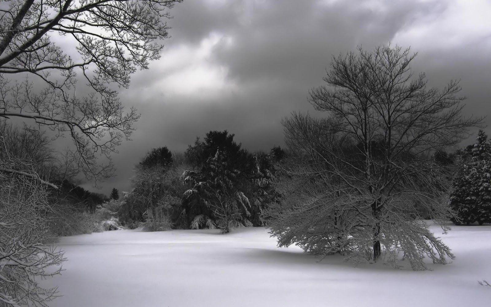 Fondo De Pantalla Paisaje Montañas Nevada: Paisajes+en+invierno+fotos+de+nieve+ríos+y+lagos