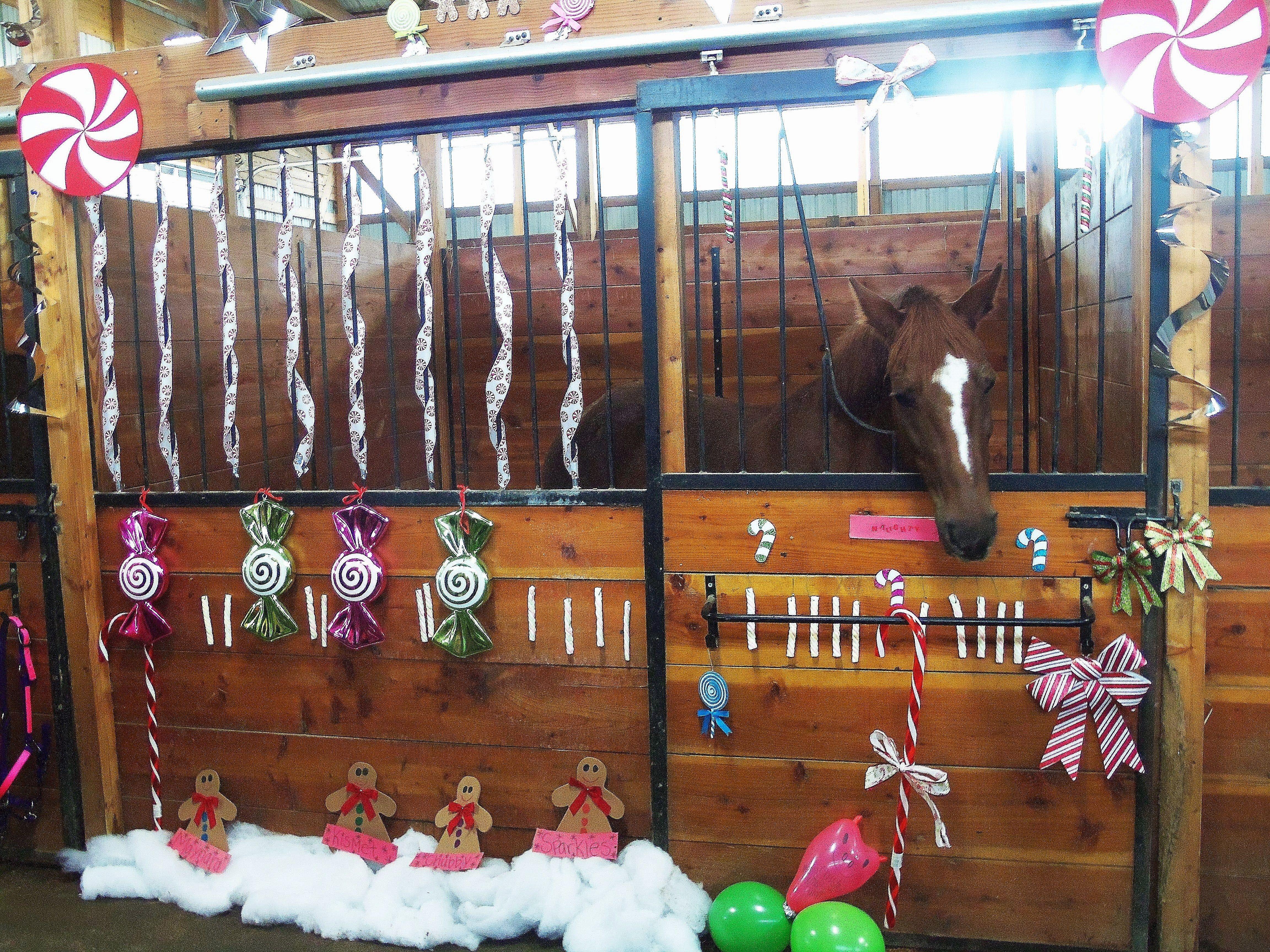 Decorating Horse Stalls For Christmas Christmas Horses Stall