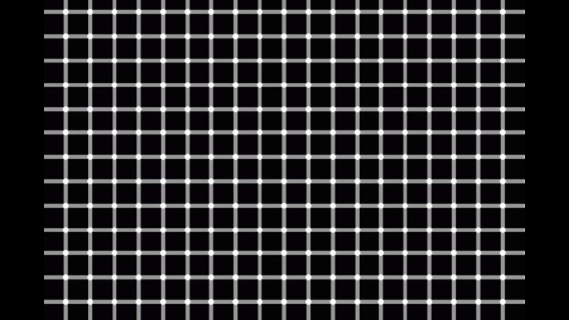 optical illusions find cat # 57