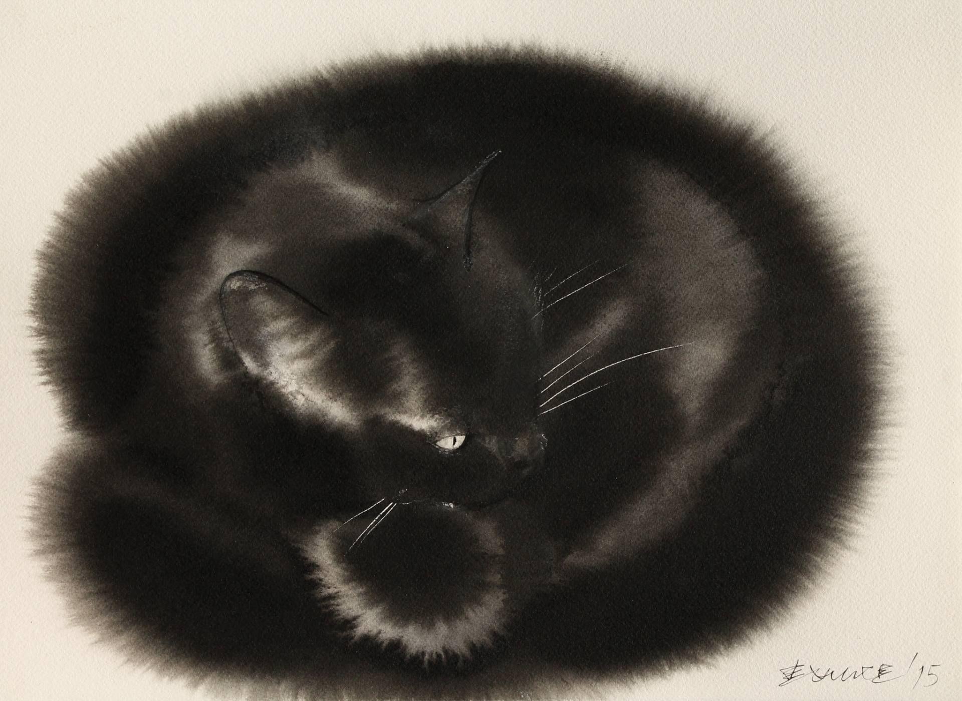 New York čierna mačička