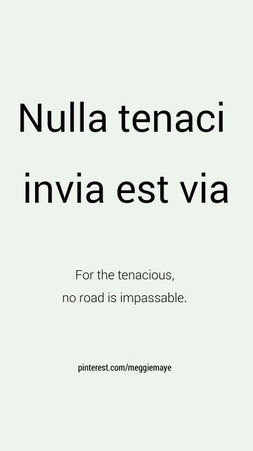 Nulla Tenaci Invia Est Via For The Tenacious No Road Is Impassable Lateinische Zitate Lateinische Phrasen The Words