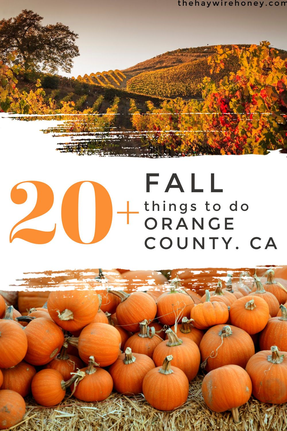 Things To Do For Fall In Orange County The Haywire Honey In 2020 California Travel Road Trips Travel Style Fall Weekend Family Getaways