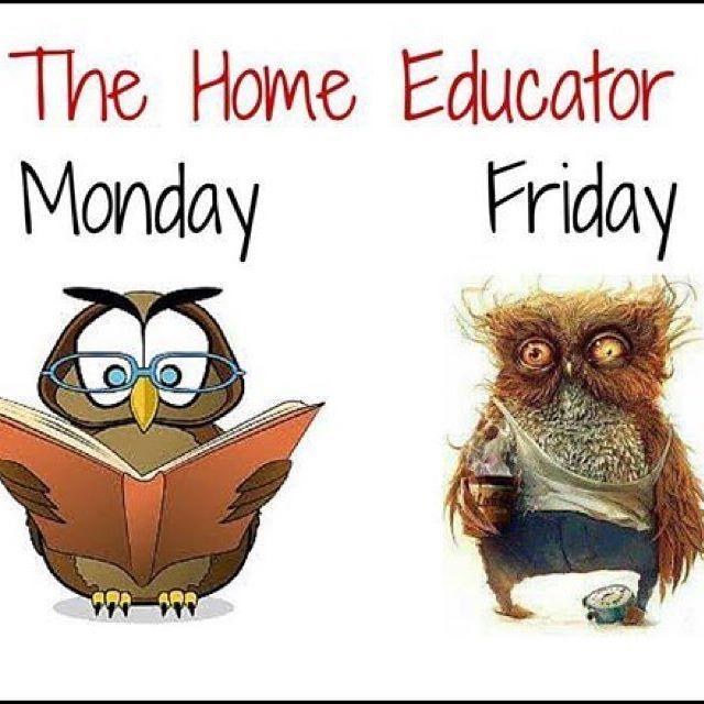 Pin on Homeschool Humor