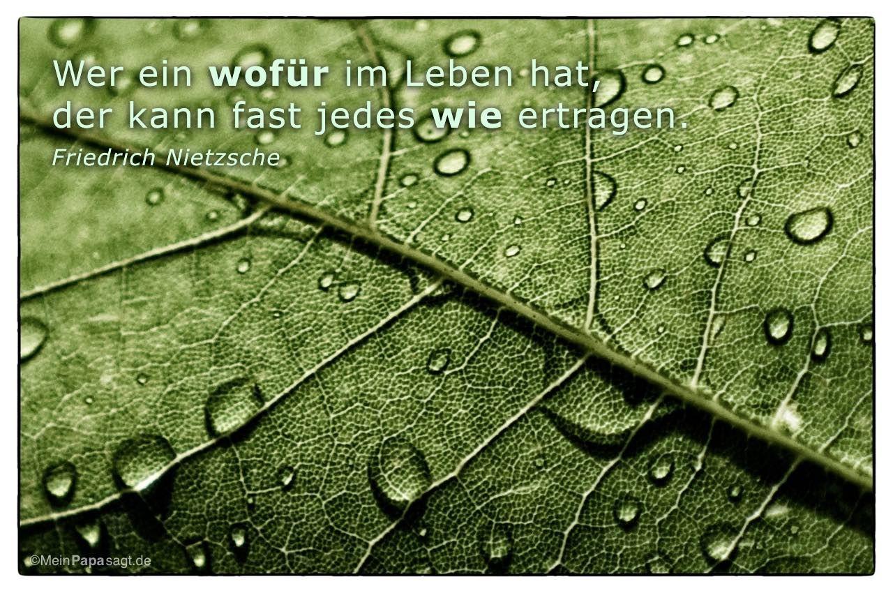Wer Ein Wofur Im Leben Hat Der Kann Fast Jedes Wie Ertragen Nietzsche Spruche Zitate Weisheiten Zitate Weisheiten