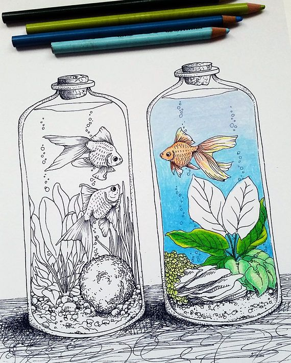 Goldfish In Tank Coloring Pages