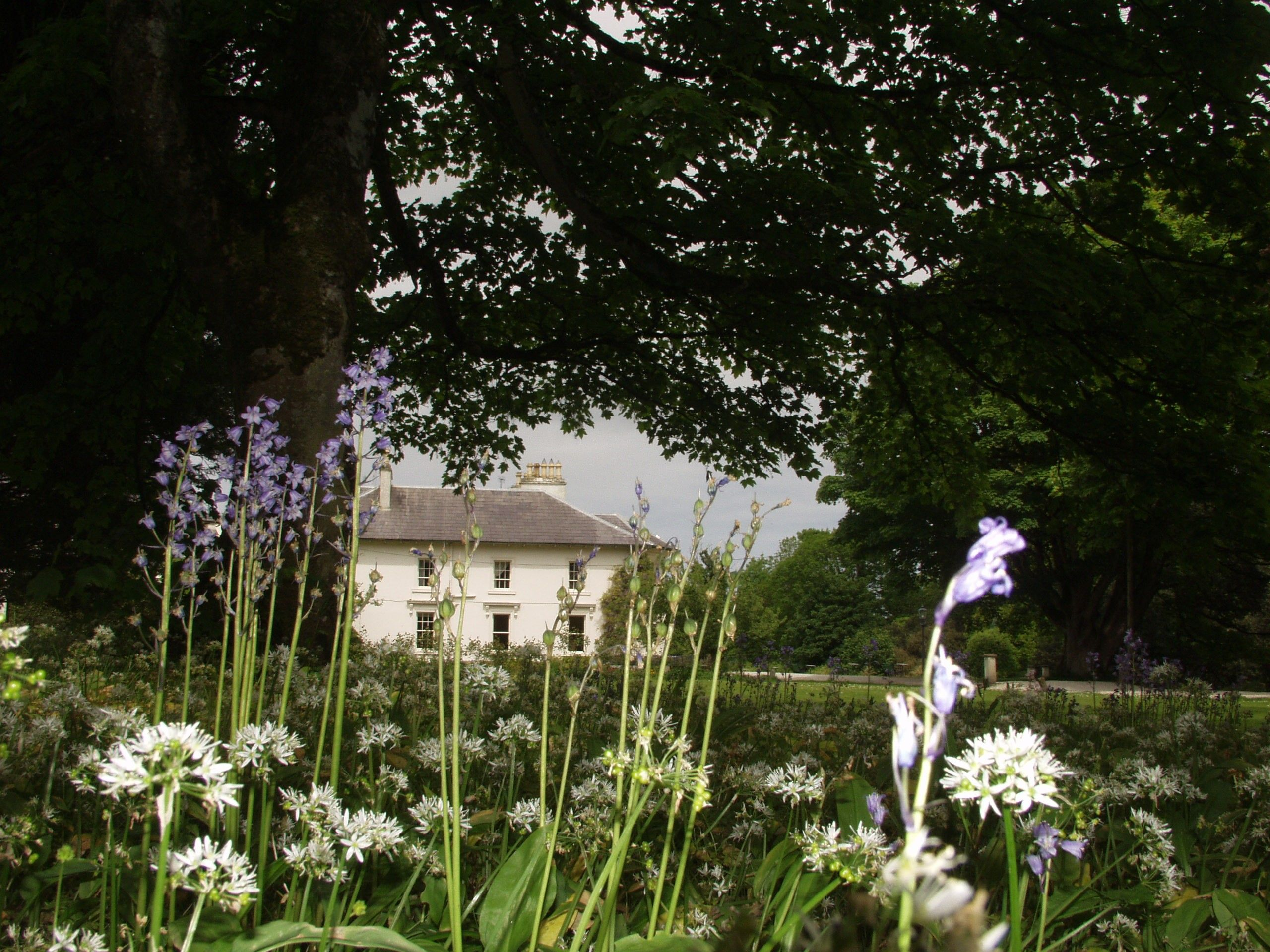 Rathmullan House Country house hotels, Country house