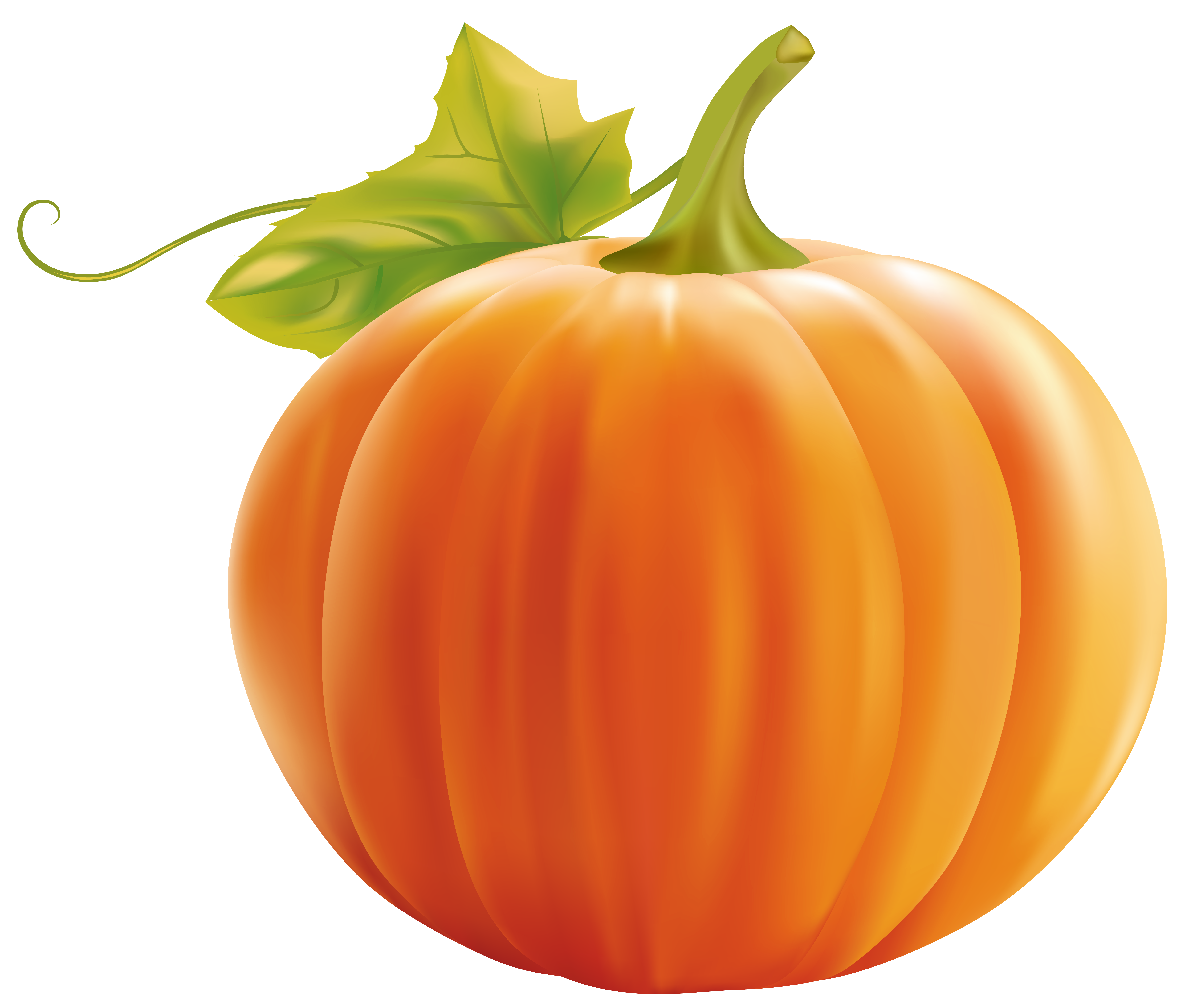 Pumpkin Png Clipart Image Pumpkin Clipart Pumpkin Png Pumpkin