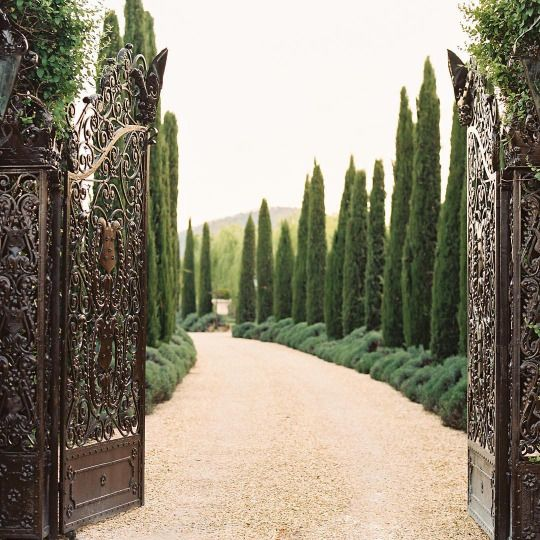 Tuscan House Style With Front Walkway And Italian Cypress: Jardines, Jardines