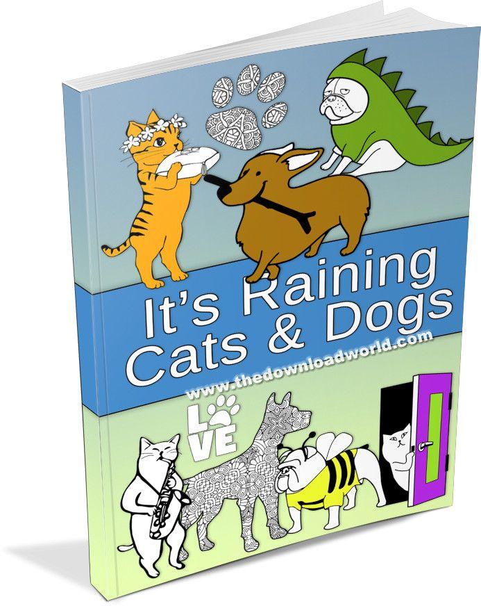 It's Raining Cat and Dogs in 2020   Dog cat, Raining cats ...