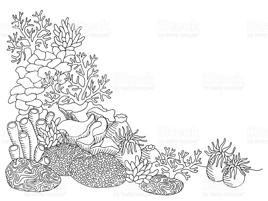 coral sea graphic art black white underwater landscape