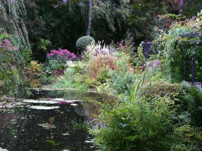 Romantic garden pond
