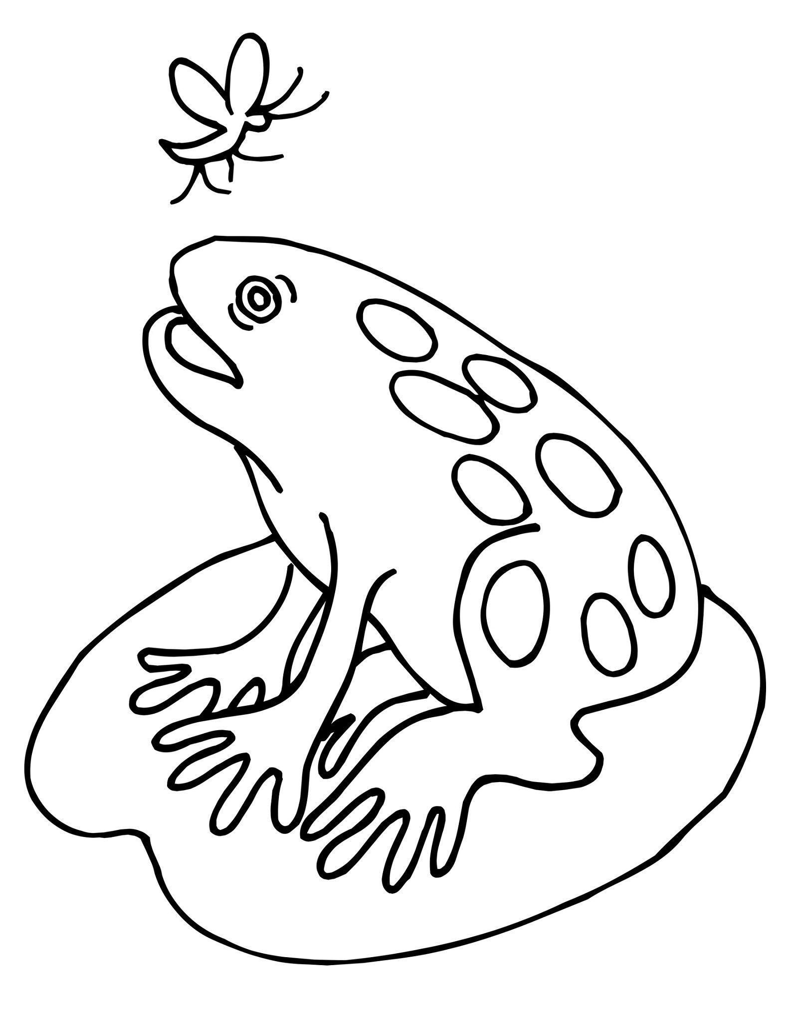 Frog Color Sheet for Kids | Kiddo Shelter | Coloring Pages for Kids ...